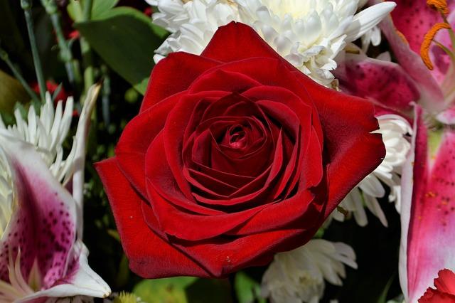 Flores urgentes tanatorio Valladolid